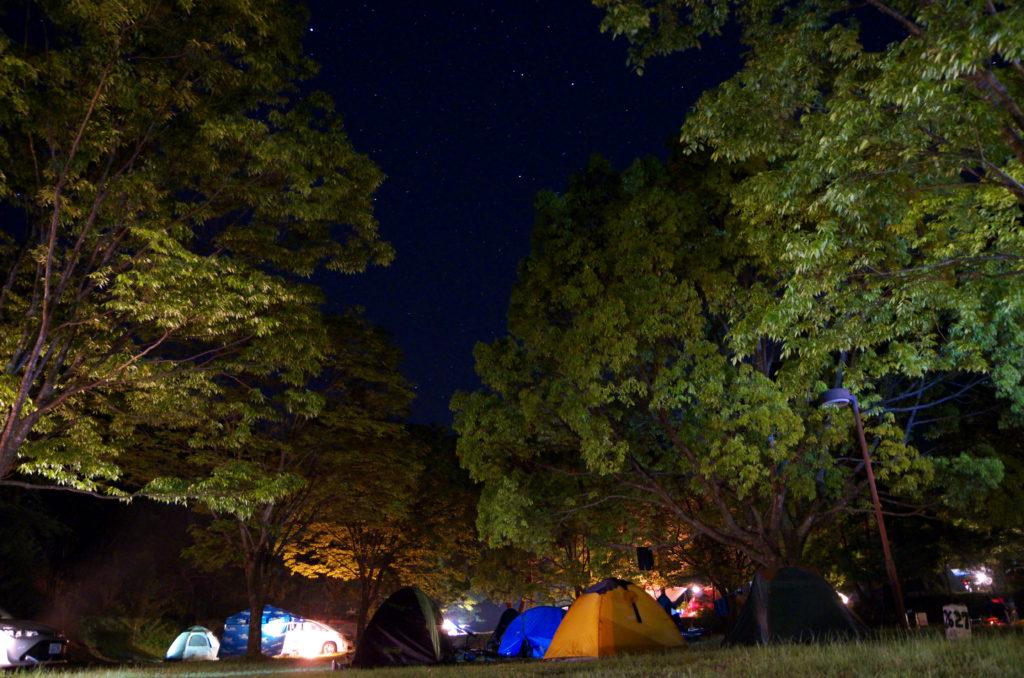 向平キャンプ場のテントサイト